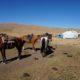 Horse riding along Song Kul, Kyrgyzstan