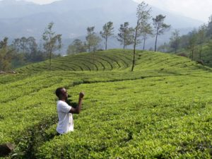 munnar traveling while black