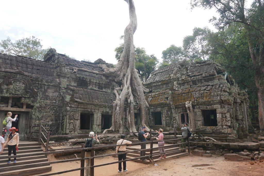 ta prohm angkor temples