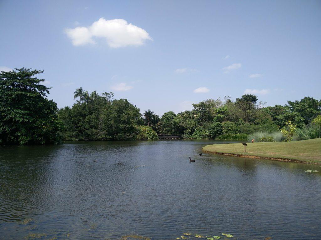 jardins botaniques singapour