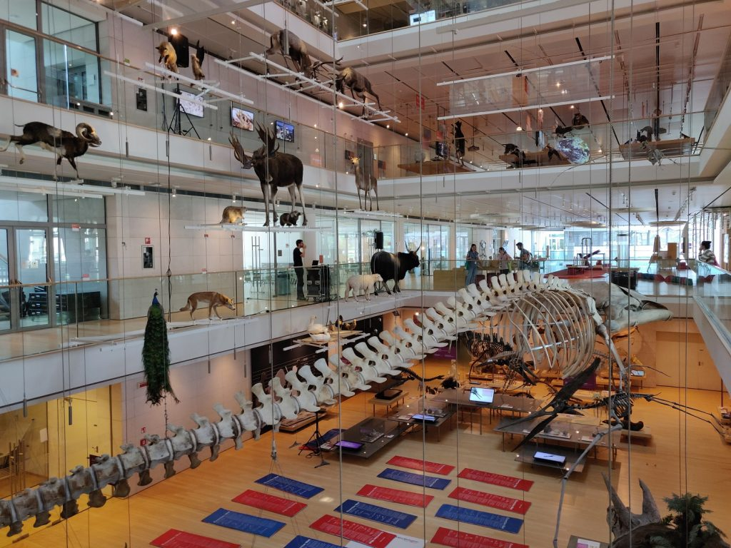 musée muse trente italie