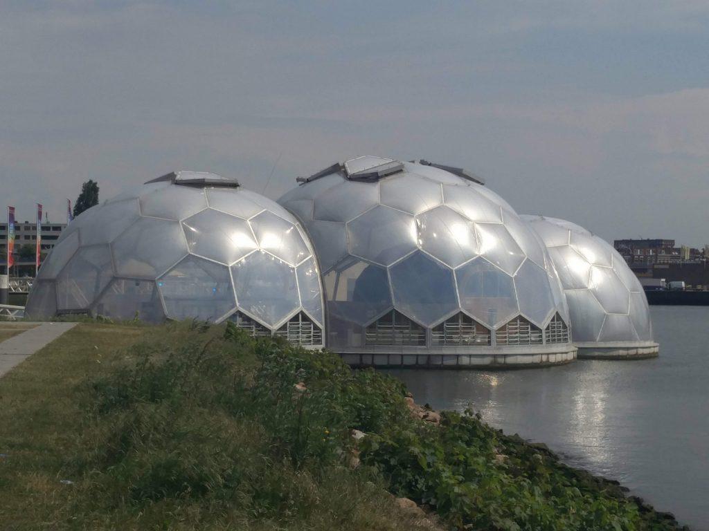 pavillon flottant rotterdam